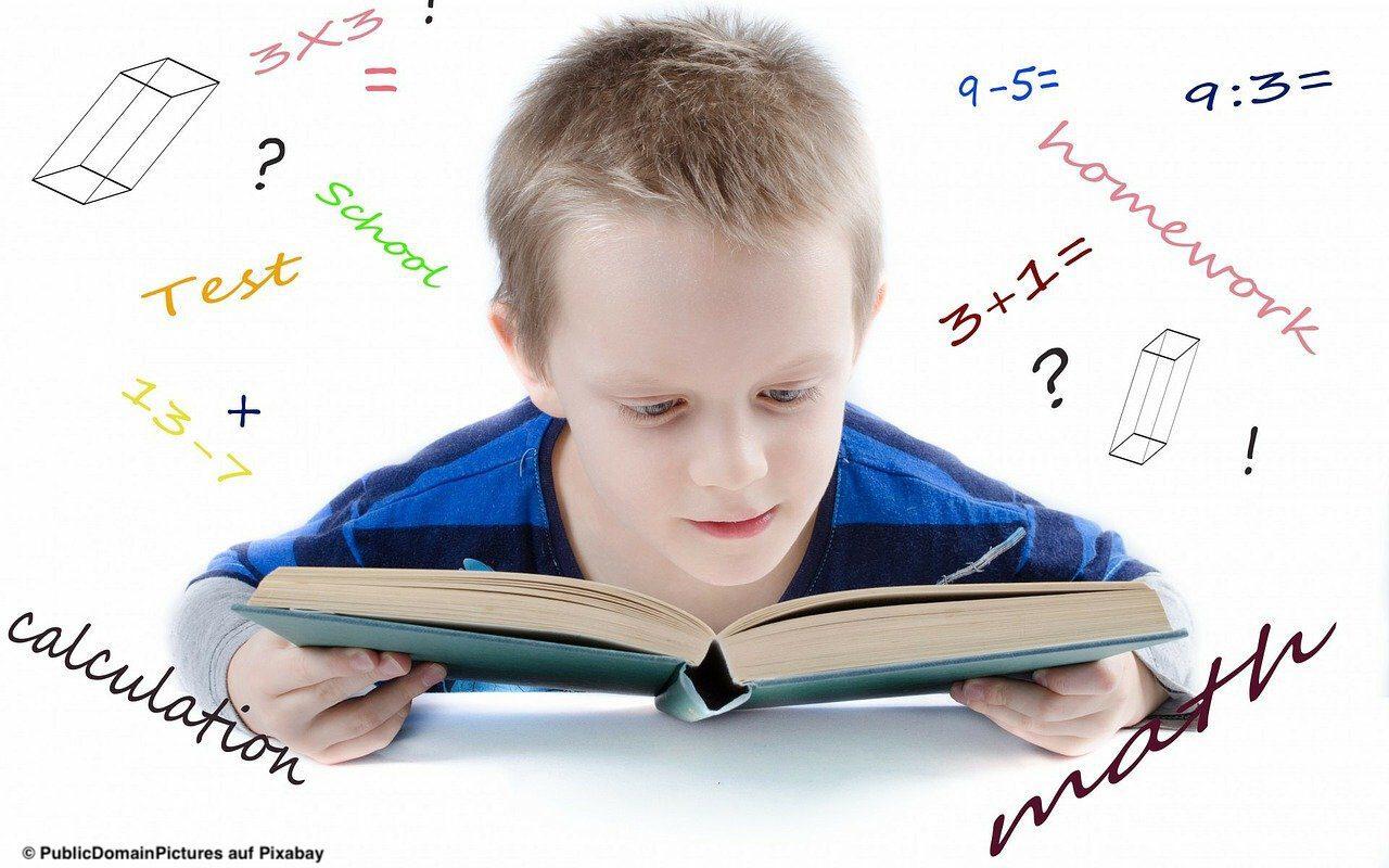 Read more about the article Lernen aus der Krise: Die zentrale Fähigkeit für selbstständiges Lernen ist Lesekompetenz