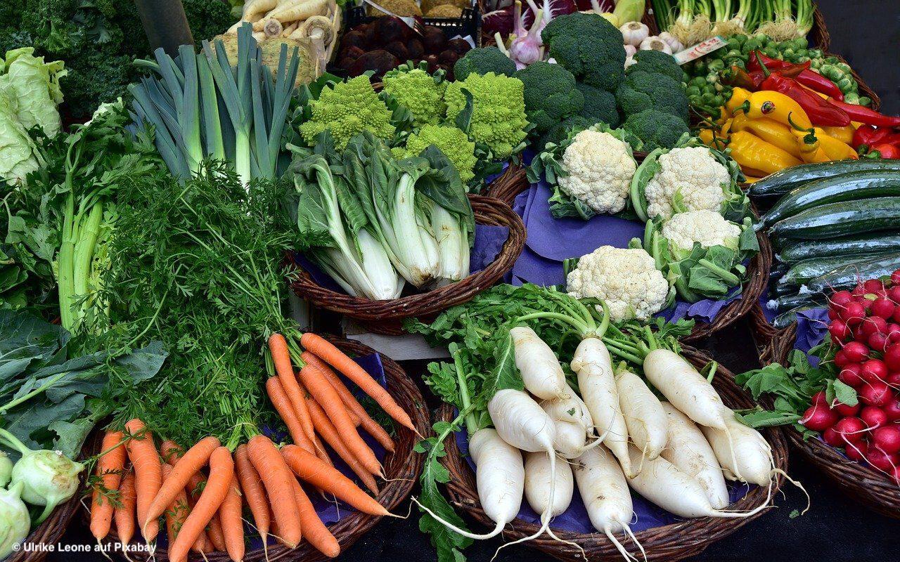 Neuer Bio-Ernährungsratgeber für Familien