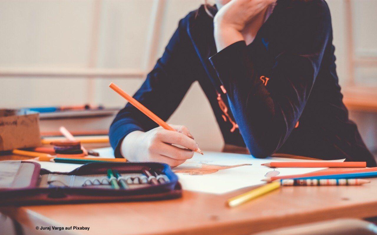 Read more about the article Im Frühjahr haben die SchülerInnen weniger gelernt