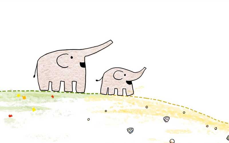 Read more about the article Hoffnung für kleine Elefanten